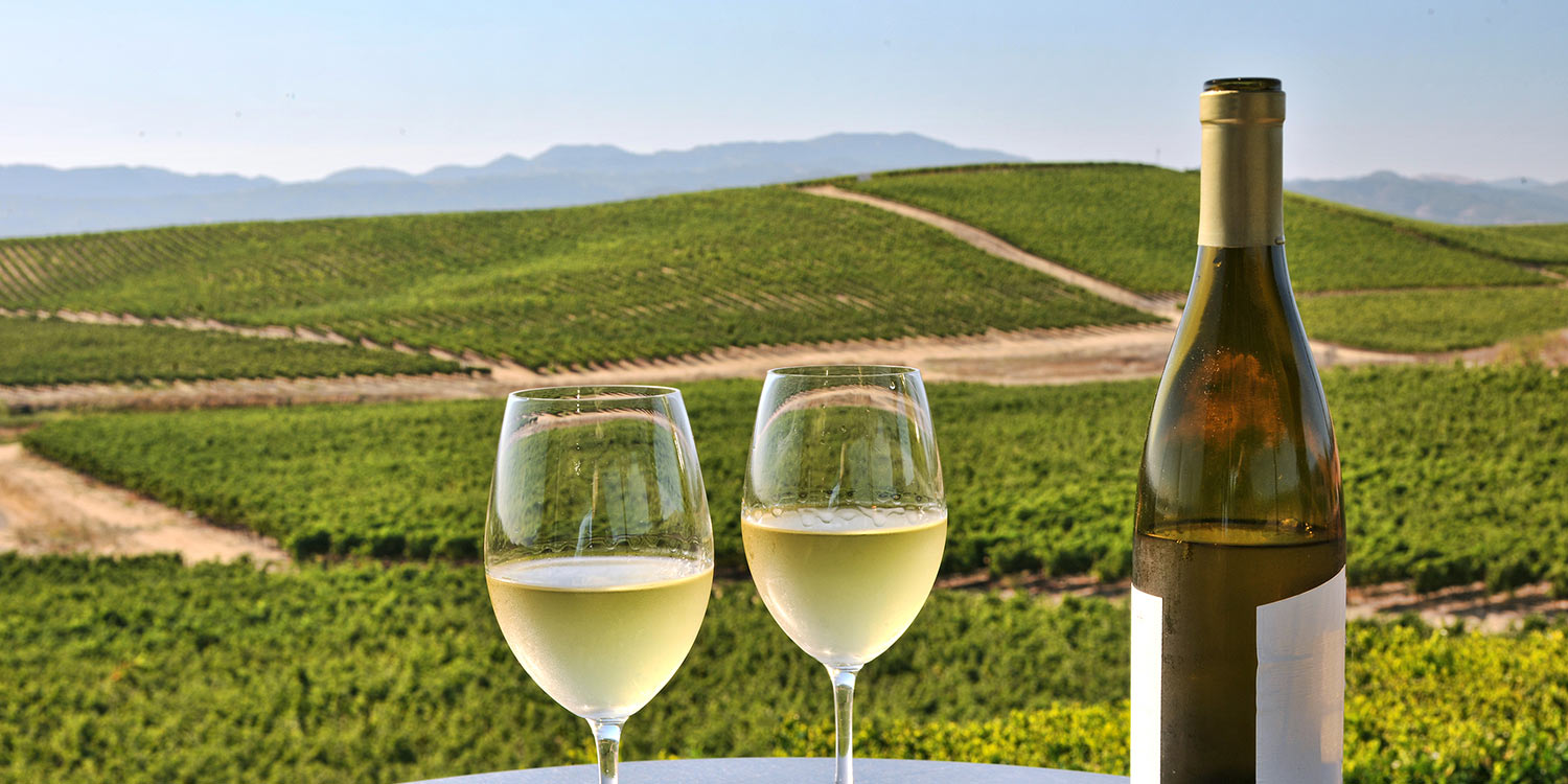 CELEBRATED WINERIES AND TASTING ROOMS ARE MINUTES AWAY  FROM LOS PADRES INN